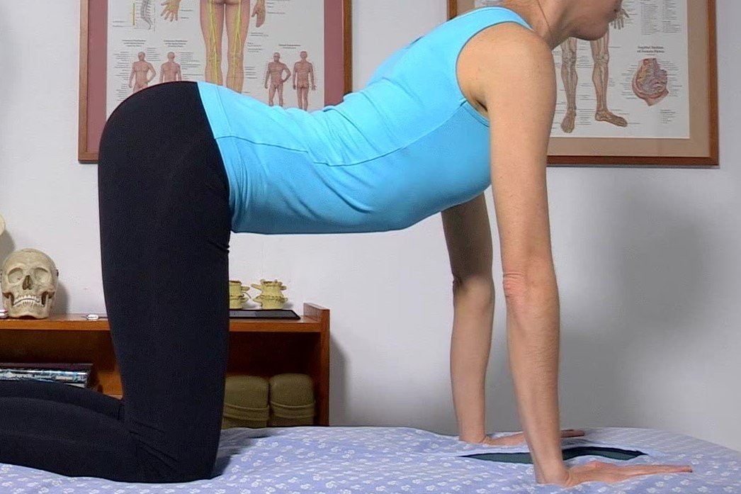 <strong>LOW BACK FLEXIBILITY EXERCISES</strong>