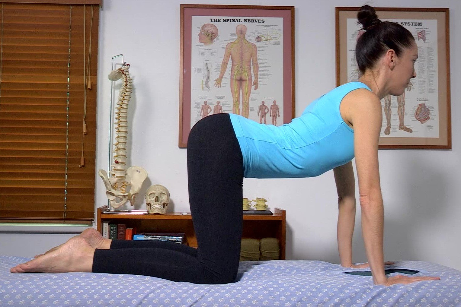 Low Back Flexibility Trunk Arching