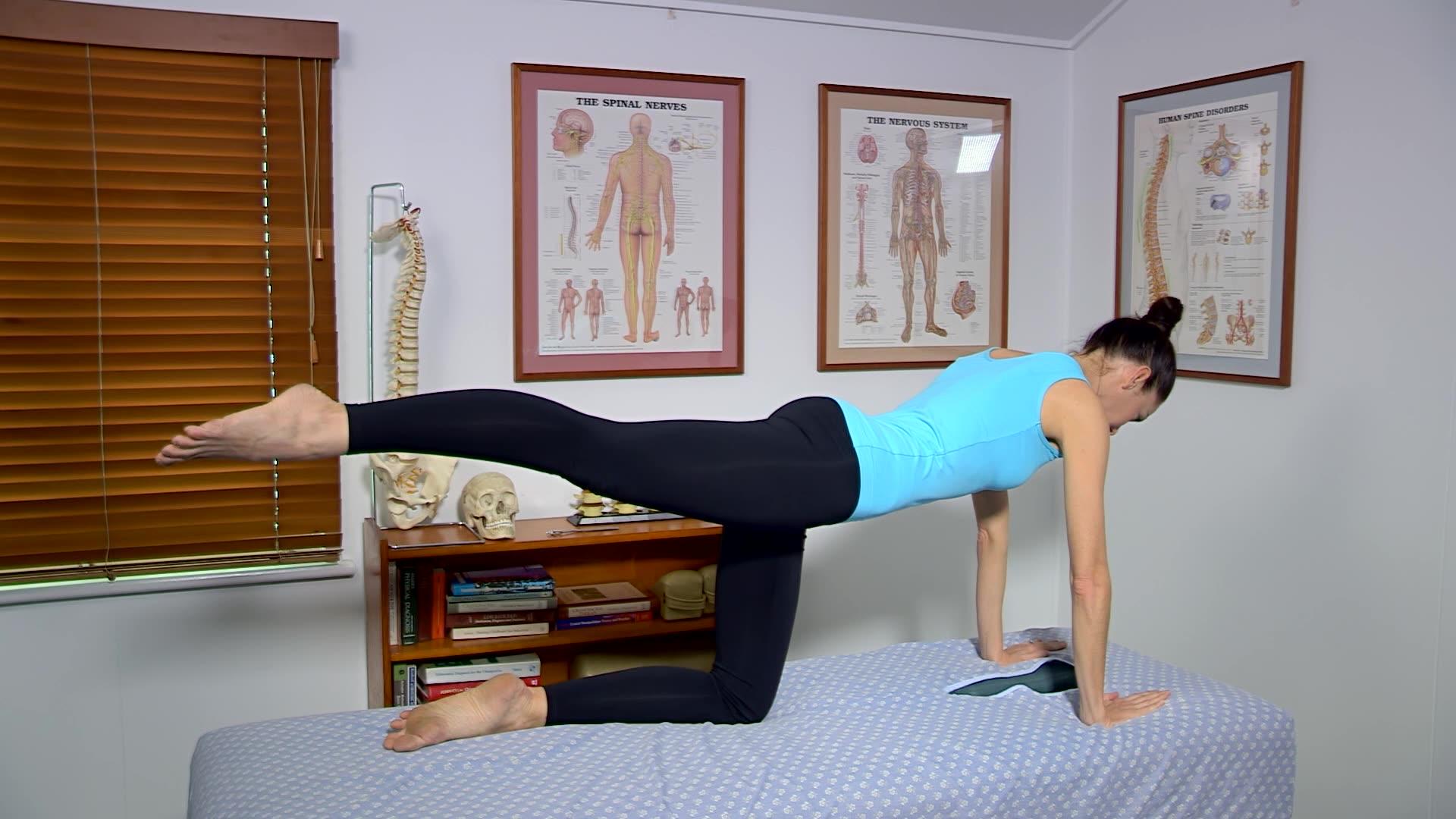 Low Back Strengthening Arm Leg Raise
